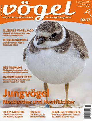VÖGEL - Magazin für Vogelbeobachtung 02/17