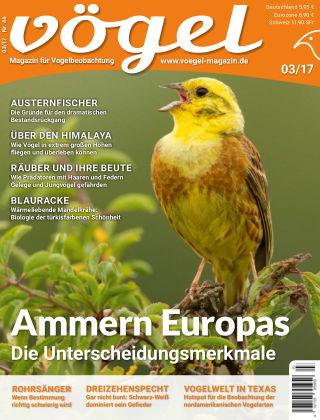 VÖGEL - Magazin für Vogelbeobachtung 03/2017