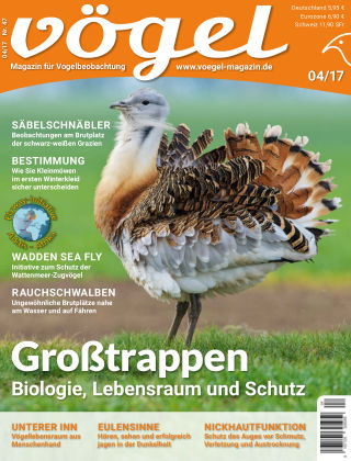 VÖGEL - Magazin für Vogelbeobachtung 04/17