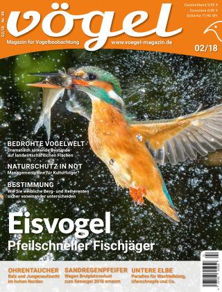 VÖGEL - Magazin für Vogelbeobachtung 02/18