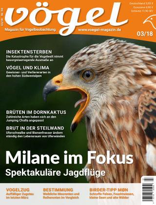 VÖGEL - Magazin für Vogelbeobachtung 03/18