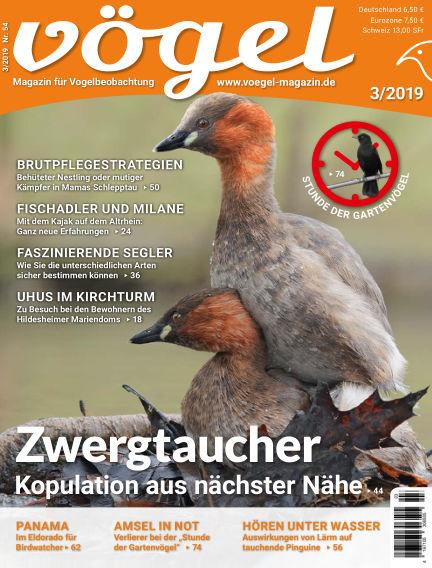 VÖGEL - Magazin für Vogelbeobachtung June 07, 2019 00:00