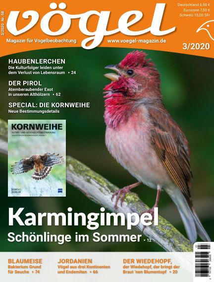 VÖGEL - Magazin für Vogelbeobachtung June 05, 2020 00:00