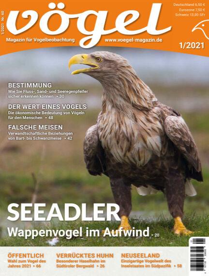 VÖGEL - Magazin für Vogelbeobachtung December 04, 2020 00:00