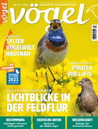 VÖGEL - Magazin für Vogelbeobachtung 02/2021