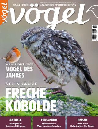 VÖGEL - Magazin für Vogelbeobachtung 03/2021