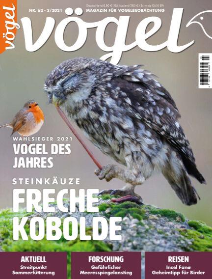 VÖGEL - Magazin für Vogelbeobachtung