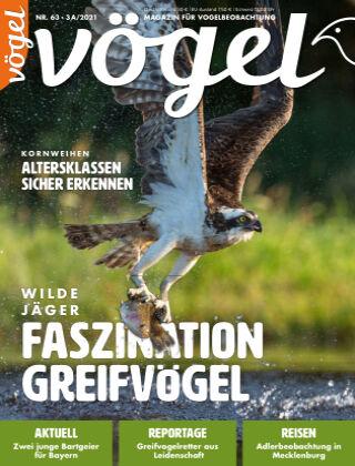 VÖGEL - Magazin für Vogelbeobachtung 03A/2021