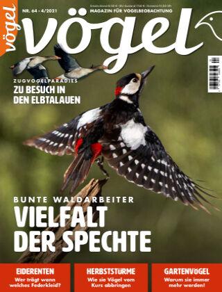 VÖGEL - Magazin für Vogelbeobachtung 04/2021