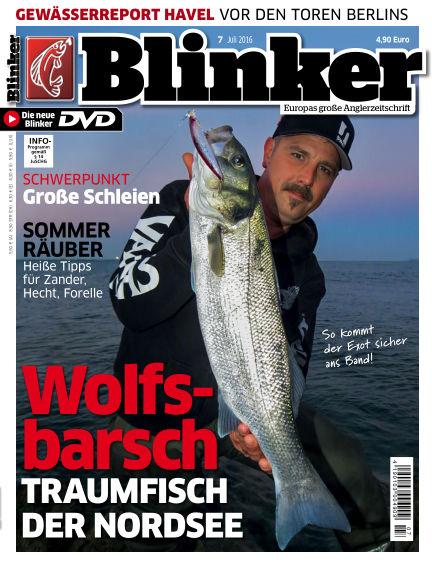 Blinker June 22, 2016 00:00