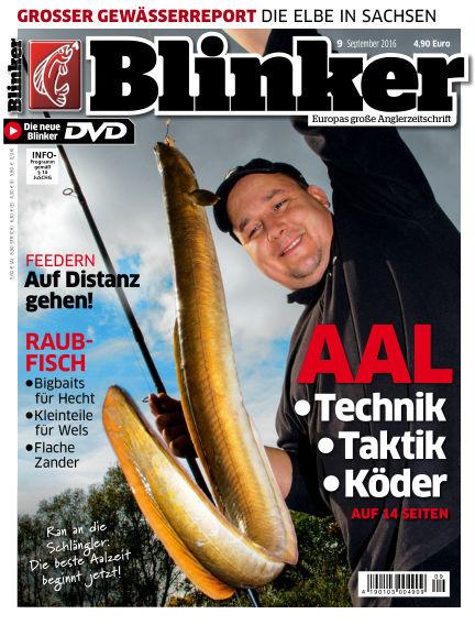 Blinker August 17, 2016 00:00