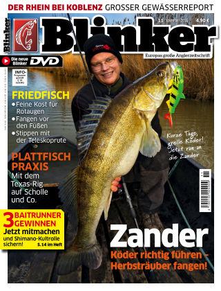 Blinker Nr. 11 2016