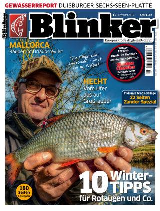 Blinker NR. 12 2016