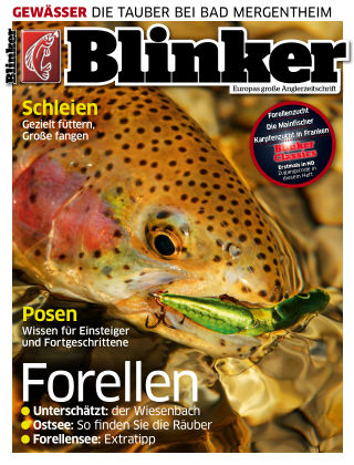 Blinker NR. 04 2017