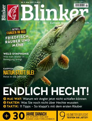 Blinker NR. 05 2017