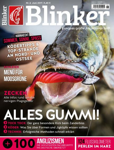 Blinker May 17, 2017 00:00