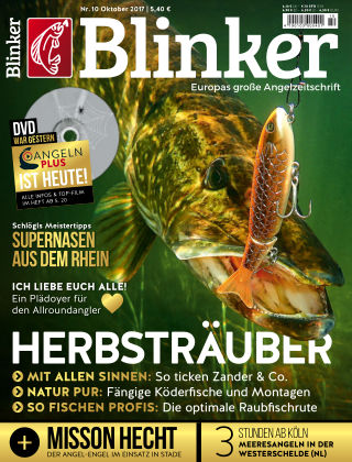 Blinker NR. 10 2017