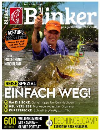 Blinker NR. 13 2017