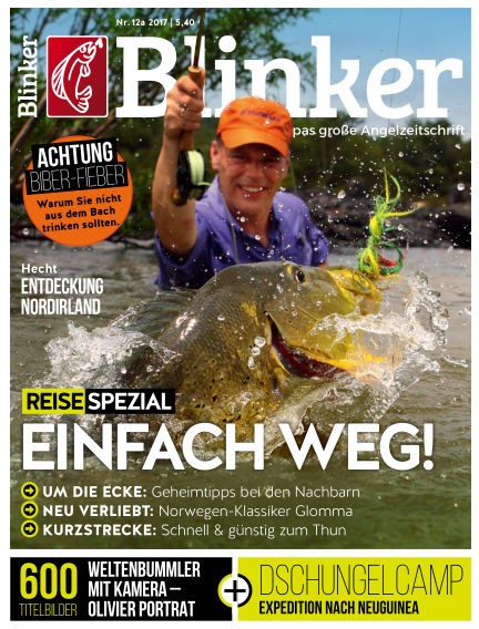 Blinker November 29, 2017 00:00