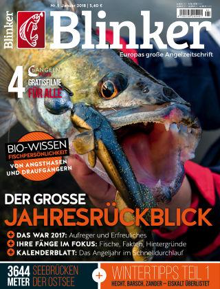 Blinker NR. 01 2018