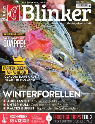 Blinker NR. 02 2018