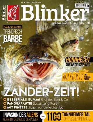 Blinker NR. 06 2018