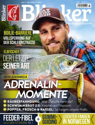 Blinker NR. 07 2018