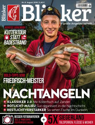 Blinker NR. 08 2018