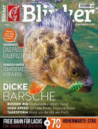 Blinker NR. 09 2018