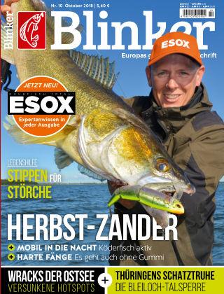 Blinker NR. 10 2018