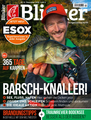 Blinker NR. 12 2018