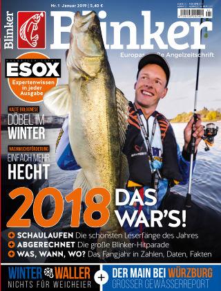 Blinker NR. 01 2019