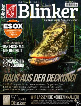 Blinker NR. 02 2019