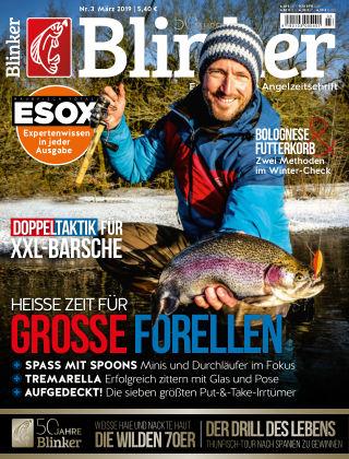 Blinker NR. 03 2019