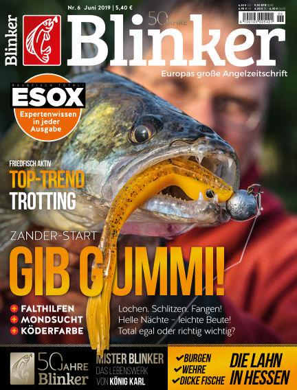 Blinker May 14, 2019 00:00