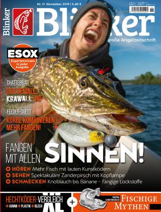 Blinker NR. 11 2019