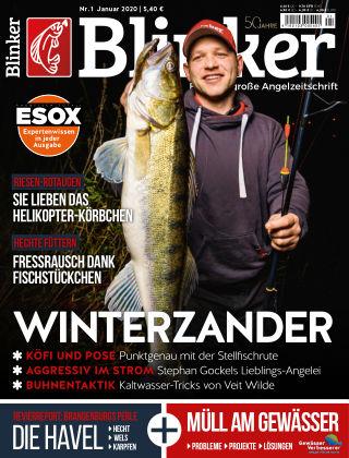 Blinker NR. 01 2020