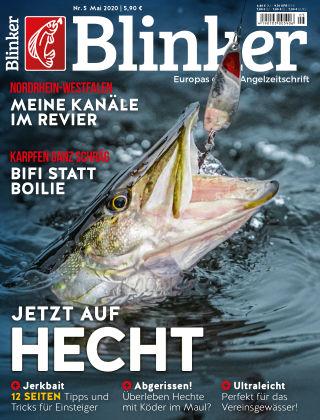 Blinker NR. 05 2020