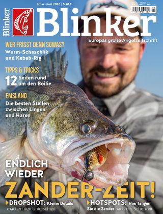 Blinker NR. 06 2020
