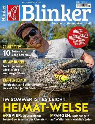 Blinker NR. 07 2020