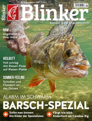 Blinker NR. 09 2020