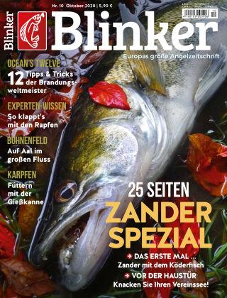 Blinker NR. 10 2020