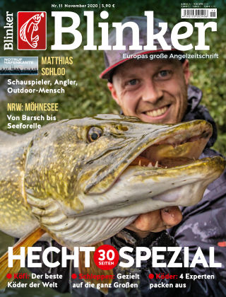 Blinker NR. 11 2020