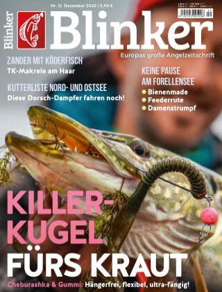 Blinker NR. 12 2020