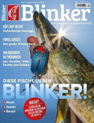 Blinker NR. 01 2021