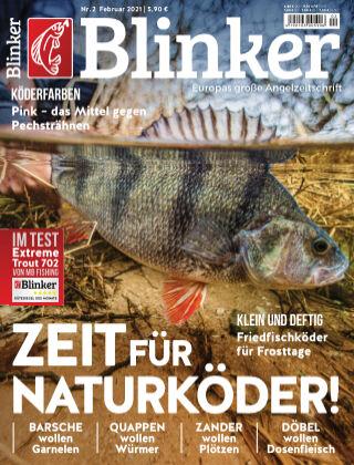 Blinker NR. 02 2021