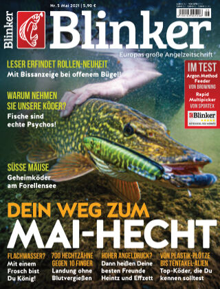 Blinker NR. 05 2021