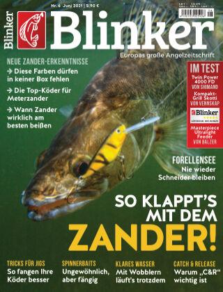 Blinker NR. 06 2021