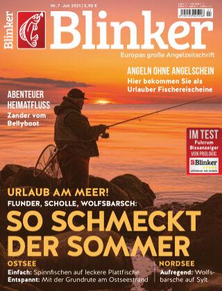 Blinker NR. 07 2021