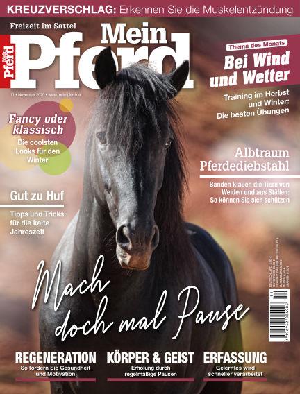 Mein Pferd October 13, 2020 00:00